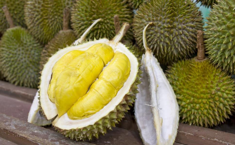 Berikut Tempat Durian Yang Terkenal di Kota Medan
